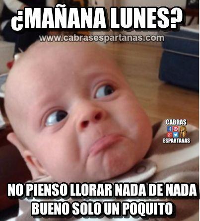 Lunes Manana Pero No Voy A Llorar Feliz Lunes Humor Humor De Bebe Humor Del Lunes