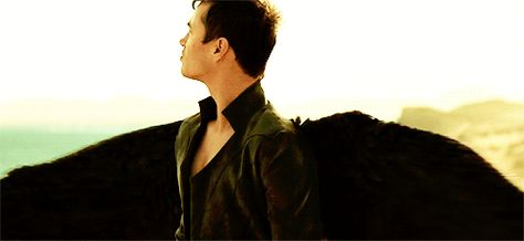 Those *wings* - AWESOME!