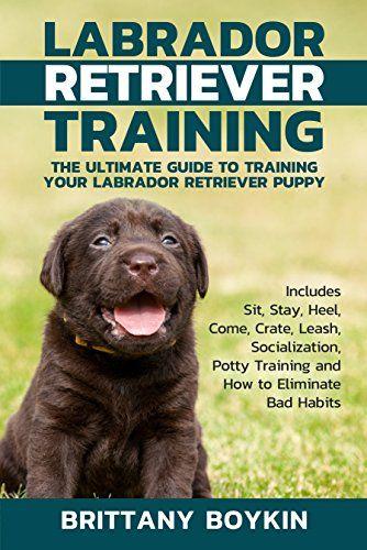 5 21 2018 Labrador Retriever Training The Ultimate Guide To