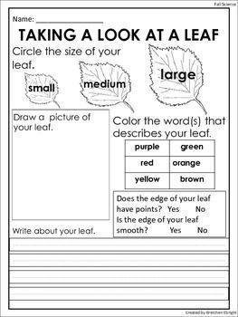 Fall Leaf Observation Sheet Science Center Activity Science