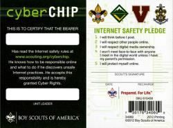 image about Bsa Cyber Chip Green Card Printable known as Impression consequence for bsa cyber chip environmentally friendly card Scouts Cyber