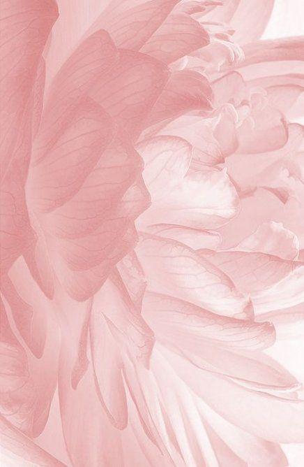 Super Wall Paper Pink Tumblr Flower Patterns Ideas - #Flower #Ideas #paper #Patterns #pink #Super #Tumblr #Wall