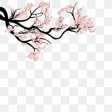 Tinta Pintados A Mano Hebilla Material Libre De Arboles De Cerezo Japanese Flowers Cherry Blossom Art Flower Backgrounds