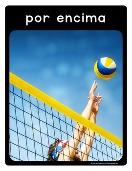 Spanish Volleyball Vocabulary Posters Flashcards With Re