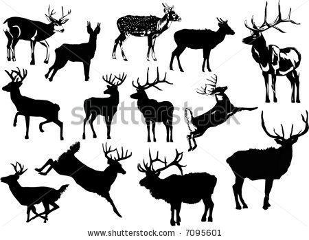 Silhouette Info Patterns on whitetail deer clip art