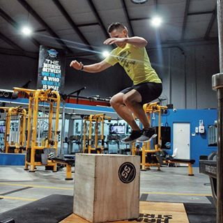 Don T Skip Leg Day Bodyweight Workout Box Jump Male Nz Health And Fitness Programme Ascend Fit Body Training Full Body Training Dont Skip Leg Day