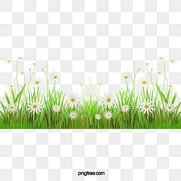 Grass Flowers Grass Clipart Underbrush Flowers Png Transparent Clipart Image And Psd File For Free Download In 2021 Pink Flowers Background Spring Background Images Green Grass Background