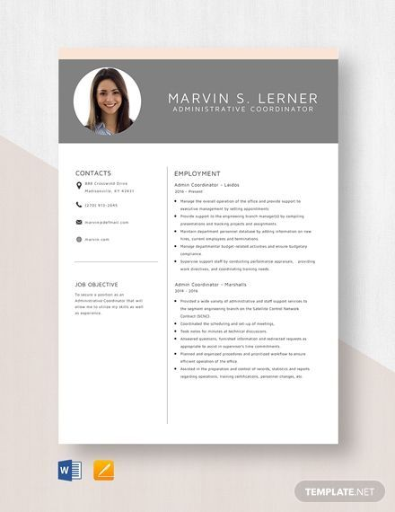 Free Clean Resume Template Download 607 Resume Templates In Psd