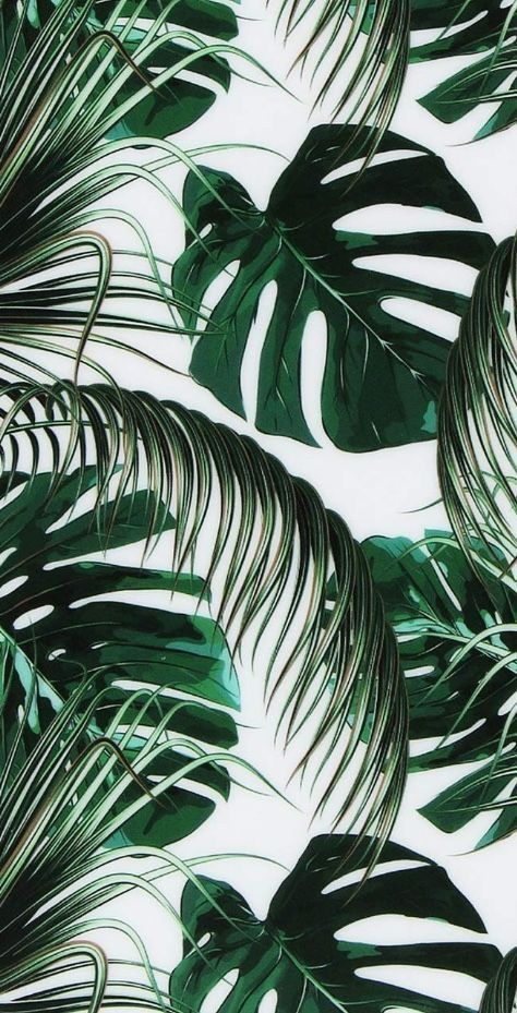 Tumblr Wallpaper Palm Leaves Ethnic mix tropical flower vector pattern background. tumblr wallpaper palm leaves