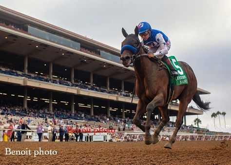 """Paulick Report on Instagram: """"Drawing away from the field ... Bast easily takes the G1 Del Mar Debutante. Trained by Bob Baffert and ridden by Drayden Van Dyke, this…"""""""