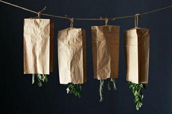 Cómo Secar Hierbas Aromáticas En 2020 Secado De Hierbas Hierbas Aromáticas Plantas Aromaticas Y Medicinales
