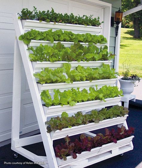 Gardening Diy Get more of the lettuce you love with a mobile vertical planter. - Make growing and harvesting greens easy when you build this handy vertical planter for your patio.