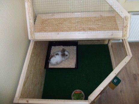 Gehege Innenhaltung In 2020 Kaninchengehege Bauen Gehege
