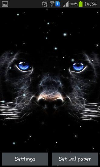 Black Panther Live Wallpaper Lovely Black Panther Fur Android Kostenlos Herunterladen Live Of Animal Wallpaper Animals Black Panther