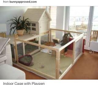 Housing Your Pet Rabbit Indoor Rabbit Playpens Rabbit Rescue Sanctuary Indoor Rabbit House Indoor Rabbit Cage Rabbit Cages