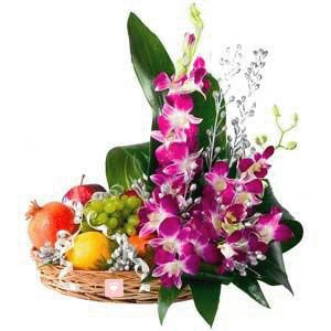 Sonia Dendrobium Orchid Flower Delivery Orchids Dendrobium Orchids