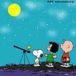 Pin By 田中 清子 On Snoopy And The Gang Snoopy Love Charlie Brown And Snoopy Snoopy And Woodstock