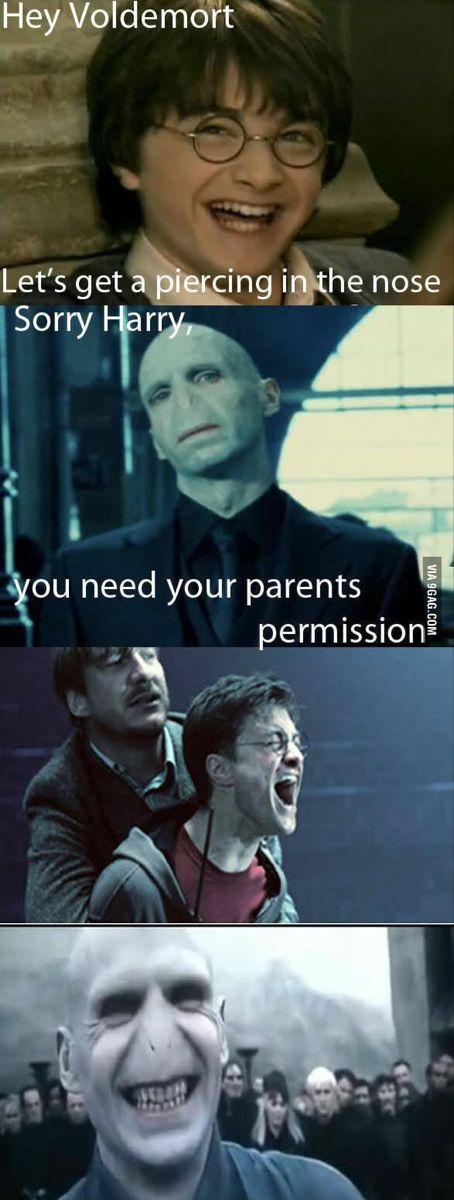 Do You Need Gravy For That Roast Harry Potter Memes Hilarious Funny Harry Potter Jokes Harry Potter Puns