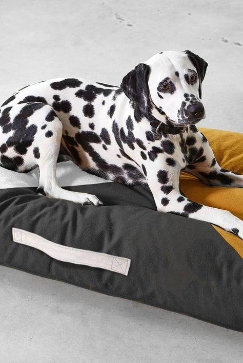 Geometric Modern Dog Bed