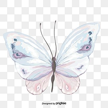 Blue Butterfly Butterfly Clipart Blue Butterfly Png Transparent Clipart Image And Psd File For Free Download Butterfly Watercolor Butterflies Vector Butterfly Illustration