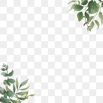 Watercolor Leaf Leaf Frame Eucalyptus Clipart Leaf Floral Png And Vector With Transparent Background For Free Download Watercolor Leaves Watercolor Flowers Pattern Green Leaf Background