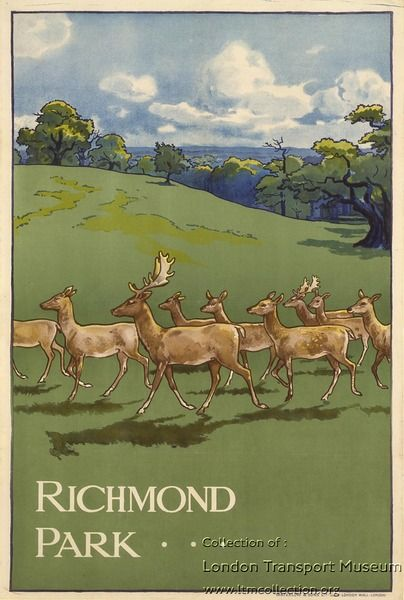 Vintage Travel Poster - Richmond Park ~ by Charles Sharland - (London Transport Museum).