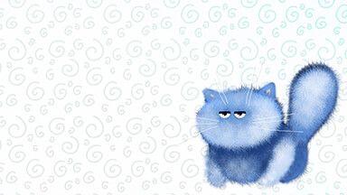 Blue Kitten Chromebook Wallpaper Uhd Wallpaper Iphone Background Images Fall Wallpaper