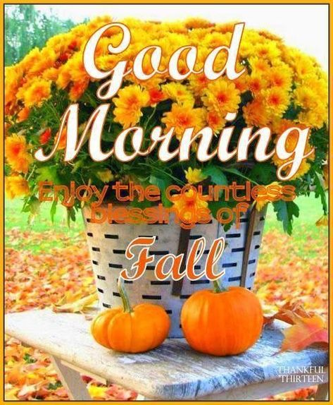 Photo of Good Morning Enjoy Your Fall Day