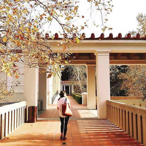 Visit the Villa this #BoxingDay✨  .  📸: @gregorygreening  .  .  .  #gettymuseum #gettyvilla #la #art #arthistory #antiquities #visit    #Regram via @gettymuseum