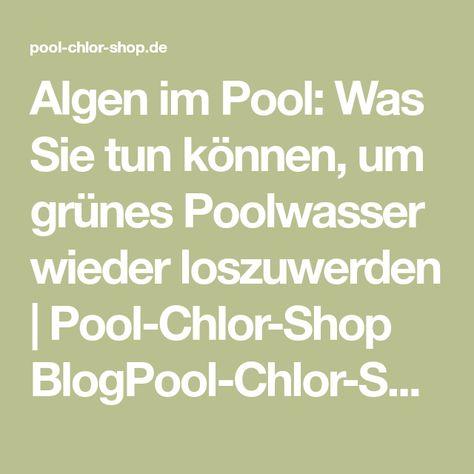 Algen Im Pool Was Sie Tun Können Um Grünes Poolwasser Wieder