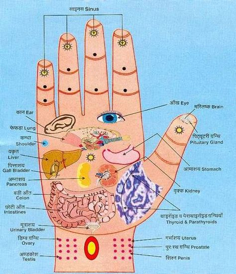 Pressure points on the hands.