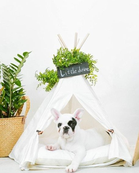 35 Unique Things From Amazon Every Home Should Have Pet Teepee Dog Teepee Dog Tent