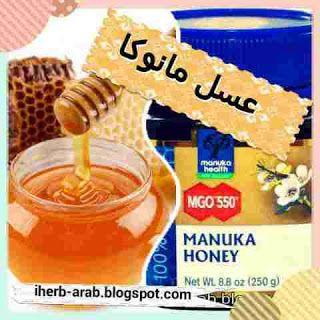 عسل المانوكا من اي هيرب وماهي افضل الانواع الاصلية Honey Manuka Honey Iherb
