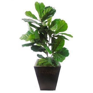 Creative Branch Faux Fiddle Leaf Floor Plant In Planter Close To Nature Or As A Meeting Point We Present Two Design I In 2020 Floor Plants Potted Trees Faux Plants