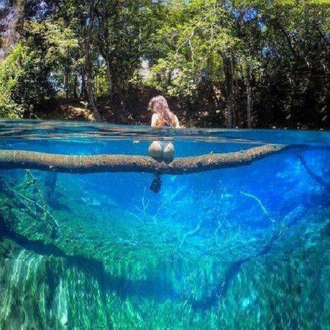 Natural pool #pool #naturalpool #natural