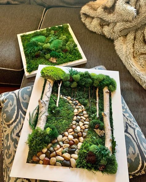 Real Preserved Moss w/ Birch Branches. Home Decor. Mother's Day Moss Wall Art, Moss Art, Garden Wall Art, Birch Branches, Moss Garden, Succulent Wall, Deco Floral, Diy Home Crafts, Nature Crafts