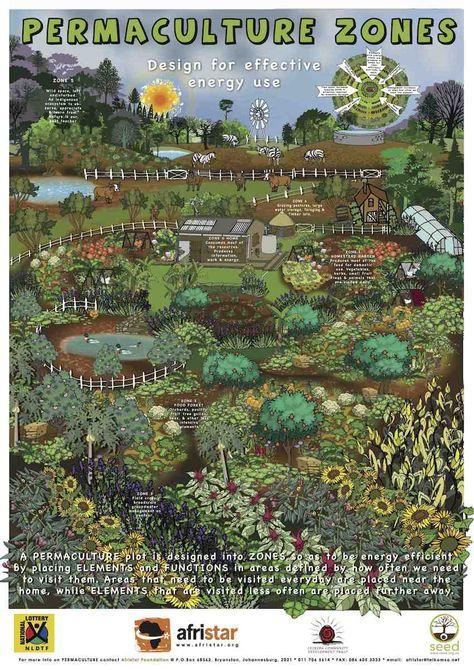 Commencer un coin de jardin en permaculture - Plumetis Magazine