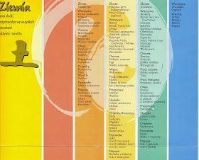 Blog Michala Ostrowskiego Kuchnia Pieciu Przemian Pie Chart Chart Map