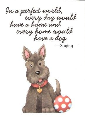 Mary Engelbreit little schnauzer All Dogs, I Love Dogs, Puppy Love, Cute Dogs, Dogs And Puppies, Doggies, Mary Engelbreit, Raza Schnauzer, Mini Schnauzer