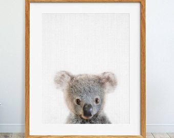 Koala Print Nursery Wall Art Baby Bear Poster