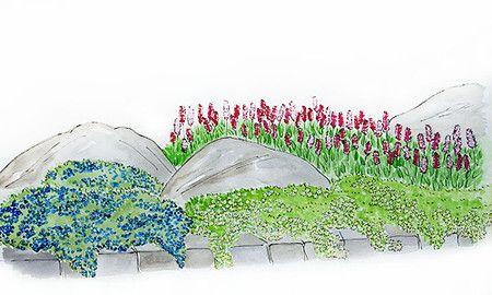Bildergalerie Mein Schoner Garten Garten Bepflanzen Garten Gartengestaltung Ideen