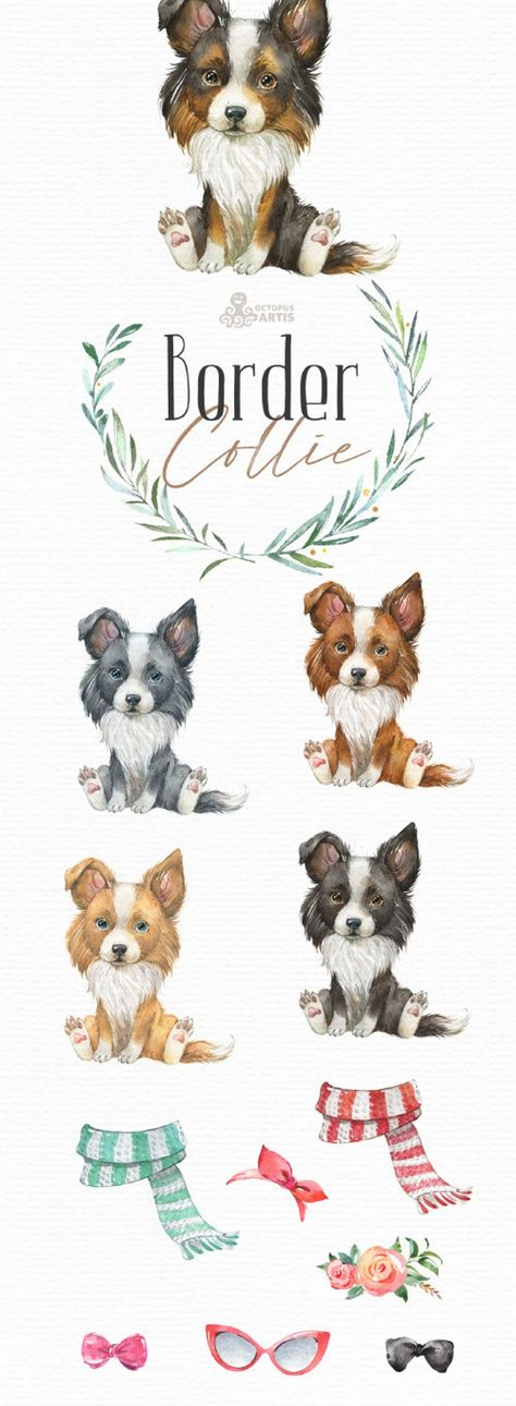 Border Collie. Watercolor little animal clipart, portrait, puppy, doggie, baby, flowers, kids nurser