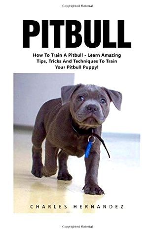 How To Stop Dog Aggression Training Your Dog Pitbull Breeding