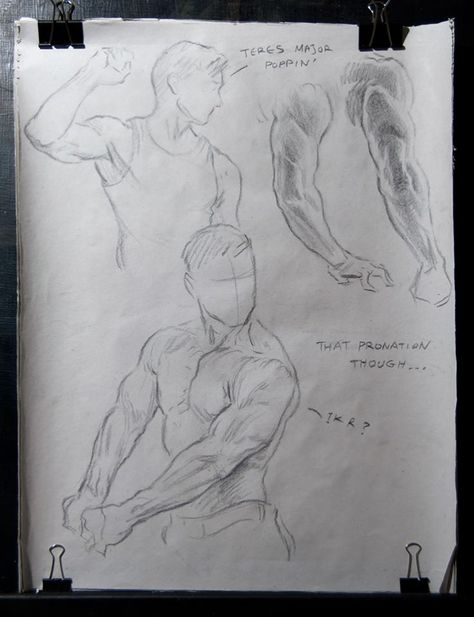 Arm sketches by AthanArt on DeviantArt