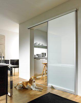Glasschiebetur Schiebetur Glastur Aluminiumrahmen Vsg 2050x800 Milchglas Space1 Ebay Schiebetur Glas Innen Schiebeturen Glasturen Innen