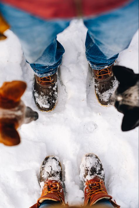 #snowday #maine #llbean #beanboots #cattledogs #llbeanpets #newenglandstyle