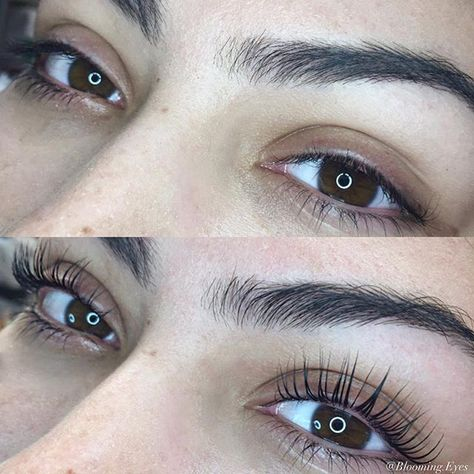 naturalbeauty Lifted these lashes to a new...