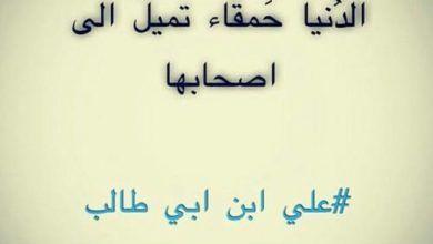 حكم رائعة عن الحياة جميلة اقوي 20 حكم عن الدنيا Arabic Calligraphy Calligraphy