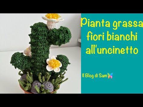 Fiori Bianchi Alluncinetto.Spiegazione Della Pianta Grassa All Uncinetto Con I Fiori Bianchi