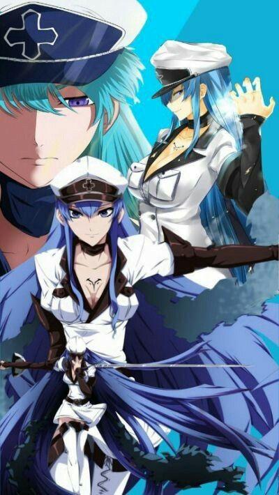 100 ideas de Akame Ga Kill | akame ga, personajes de anime